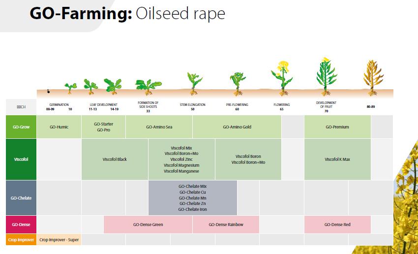 oilseed 2